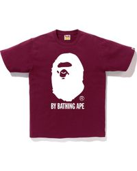 66b68f4ac Aape By Bathing Ape T-Shirt With Crossbones Print in Black for Men ...