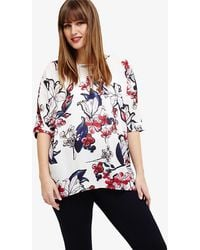 Studio 8 - Layla Floral Top - Lyst