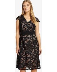 Studio 8 - Cleo Lace Dress - Lyst