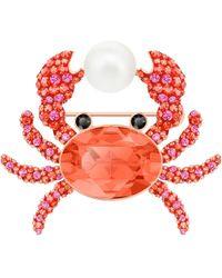 Swarovski - Ocean Crab Brooch - Lyst