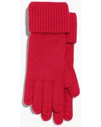 Talbots - Ribbed-cuff Gloves - Lyst