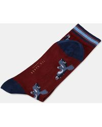 Ted Baker - Bird Print Cotton Socks - Lyst