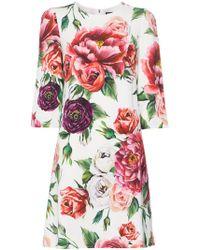 Dolce & Gabbana - Printed Cady Dress - Lyst
