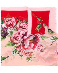 Dolce & Gabbana - Floral Print Scarf - Lyst