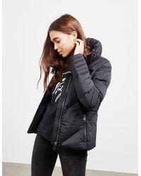 d138da29 Tommy Hilfiger - Womens April Padded Jacket - Online Exclusive Black - Lyst