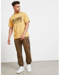BBCICECREAM - Leopard Print Track Trousers Olive - Lyst