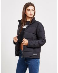 Calvin Klein - Lightweight Padded Jacket Black - Lyst