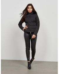 Armani Jeans - Womens Short Padded Jacket Black - Lyst