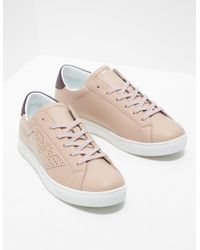 Emporio Armani - Womens Shara Trainers Pink - Lyst