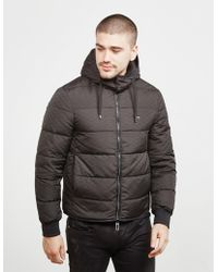 Emporio Armani - Mens Eagle Print Down Padded Jacket Black - Lyst