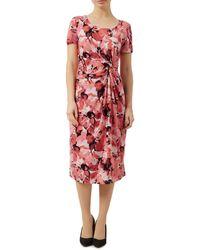 Precis Petite - Short Sleeve Floral Dress - Lyst