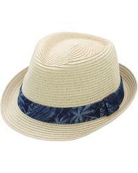 Hudson North - Palm Tree Print Fedora Hat - Lyst