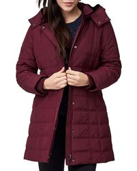 Precis Petite - Quilted Hooded Coat - Lyst
