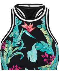 Seafolly - Woman Jungle Out There Printed Bikini Top Black - Lyst