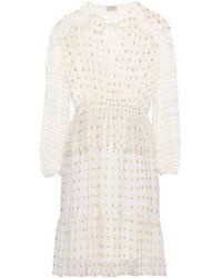Temperley London - Lace-trimmed Metallic Fil Coupé Chiffon Mini Dress - Lyst