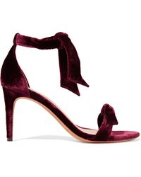 Alexandre Birman - Clarita Bow-embellished Velvet Sandals - Lyst