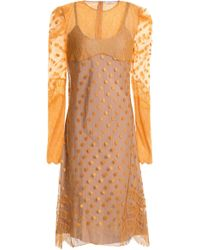 Nina Ricci - Lace-trimmed Embroidered Point D'esprit Dress - Lyst