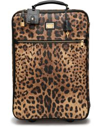 Dolce & Gabbana - Leopard-print Textured-leather Suitcase Animal Print - Lyst