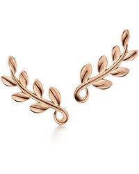 Tiffany & Co. - Paloma Picasso. Olive Leaf Climber Earrings In 18k Rose Gold - Lyst