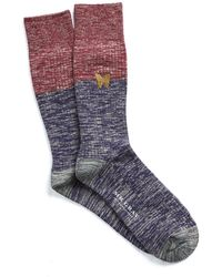 Mr Gray - Color Block Socks With Butterfly - Lyst