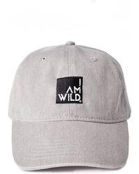 Todd Snyder - Iamwild® Baseball Cap In Grey - Lyst