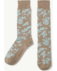 Tommy Bahama | Tropical Passion Socks | Lyst