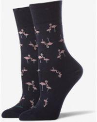 Tommy John - Flamingo Stay Up Dress Sock - Lyst