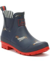 Joules - Womens French Navy Dachshund Wellibob Wellies - Lyst
