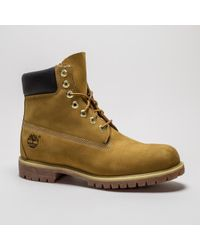Timberland - Af 6 Inch Premium Boot Wheat Boots - Lyst