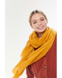 Urban Outfitters Uo Basic Lightweight Scarf