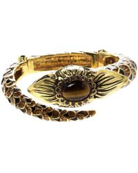 Roberto Cavalli Gold Gold And Steel