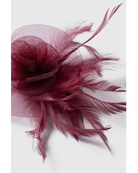Wallis - Purple Clip Feather Fascinator - Lyst