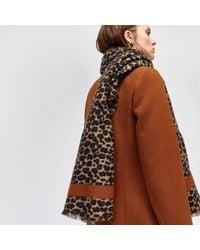 Warehouse - Leopard Print Blanket Scarf - Lyst