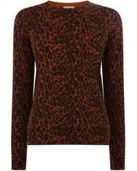 Warehouse Leopard Print Crew Jumper - Orange