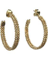 Talia Naomi - Beluga Double Hooped Earrings Gold - Lyst
