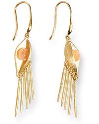 Ona Chan Jewelry | Buddha Eye Earring With Druzy Gold | Lyst