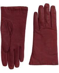 P.A.R.O.S.H. - Gloves - Lyst