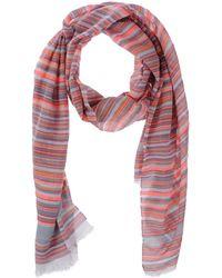 ACCESSORIES - Oblong scarves Manila Grace cIsaQE7G