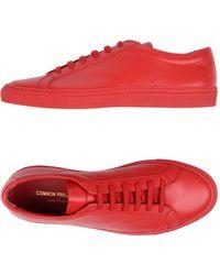 Common Projects Zapatos de cordones