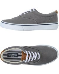 Sperry Top-Sider - Low-tops & Sneakers - Lyst