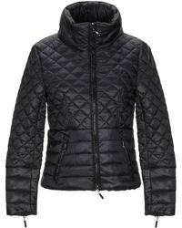 CafeNoir Synthetic Down Jacket