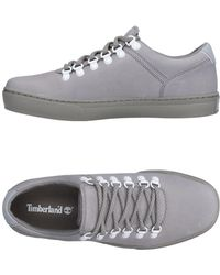Timberland - Low-tops & Sneakers - Lyst