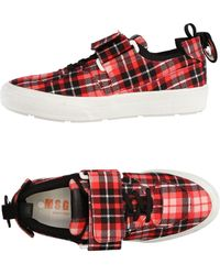 MSGM - Low-tops & Trainers - Lyst