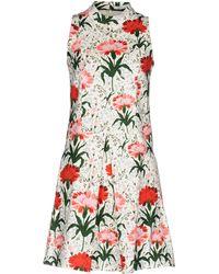 Erdem - Maia Floral-print Cotton-blend Piqué Dress - Lyst