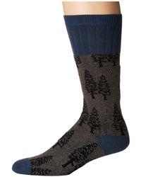 Socksmith - Trees (hemp) Men's Crew Cut Socks Shoes - Lyst