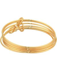 French Connection - Skinny Bangle Bracelet Set (gold) Bracelet - Lyst