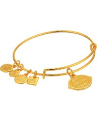 ALEX AND ANI - Charity By Design When Life Gives You Lemons Bangle (shiny Silver) Bracelet - Lyst