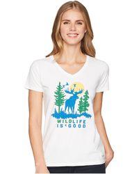 Life Is Good. - Wildlife Moose Crusher Vee (cloud White) Women's T Shirt - Lyst