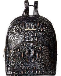 Brahmin - Melbourne Mini Dartmouth Backpack (scarlet) Handbags - Lyst