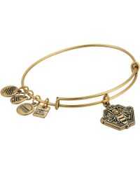 ALEX AND ANI - Charity By Design Queen Bee Bangle (rafaelian Silver) Bracelet - Lyst